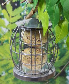 Bird Feeders Mini Caged Fat Ball Feeder