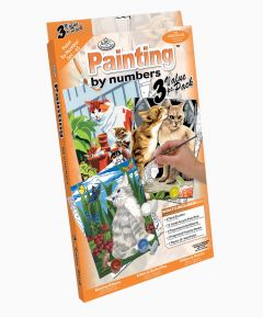 Painting by Numbers 3pk - Cats