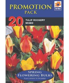 Tulip Rockery Mix - 20 Pack