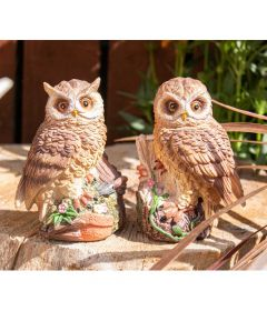 Decorative Owls - Set of 2