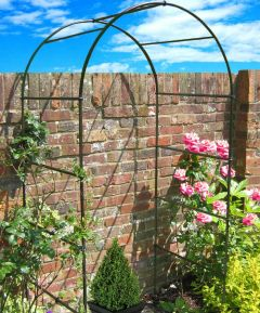 A Brick Wall With A Garden Arch In Front Of It. Green Plants Are Growing Up One Side Of The Arch And Roses Are Growing On The Other Side.